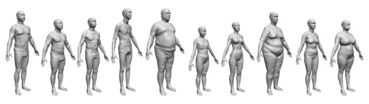 variatie in lichaamsvormen en lichaamsgewichten